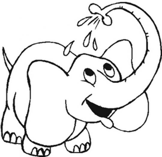 Dibujos Para Nin Os Para Colorear De Animales