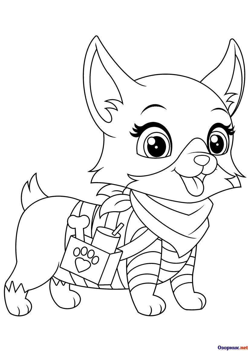 Dibujos Para Colorear En Alta Calidad De Mascotas